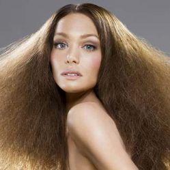 Совет фармацевта сухие волосы